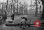 Image of cutting trees Berlin Germany, 1945, second 51 stock footage video 65675042631