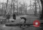 Image of cutting trees Berlin Germany, 1945, second 52 stock footage video 65675042631