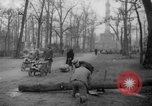 Image of cutting trees Berlin Germany, 1945, second 55 stock footage video 65675042631