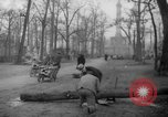 Image of cutting trees Berlin Germany, 1945, second 56 stock footage video 65675042631