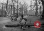 Image of cutting trees Berlin Germany, 1945, second 57 stock footage video 65675042631