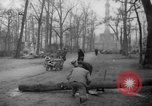 Image of cutting trees Berlin Germany, 1945, second 58 stock footage video 65675042631