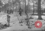 Image of hand drawn carts Berlin Germany, 1945, second 23 stock footage video 65675042632