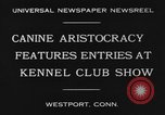 Image of Kennel Club dog show Westport Connecticut USA, 1930, second 2 stock footage video 65675042736