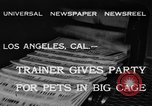 Image of leopards Los Angeles California USA, 1933, second 4 stock footage video 65675042746