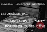 Image of leopards Los Angeles California USA, 1933, second 5 stock footage video 65675042746