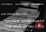 Image of leopards Los Angeles California USA, 1933, second 7 stock footage video 65675042746