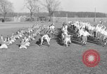 Image of Notre Dame football team South Bend Indiana USA, 1938, second 9 stock footage video 65675042790