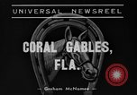 Image of Easiest Way horse Coral Gables Florida USA, 1938, second 2 stock footage video 65675042791