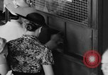 Image of Easiest Way horse Coral Gables Florida USA, 1938, second 17 stock footage video 65675042791
