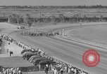 Image of Easiest Way horse Coral Gables Florida USA, 1938, second 20 stock footage video 65675042791