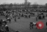 Image of Grand National horse race Liverpool England United Kingdom, 1963, second 9 stock footage video 65675042828