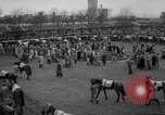 Image of Grand National horse race Liverpool England United Kingdom, 1963, second 10 stock footage video 65675042828