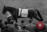 Image of Grand National horse race Liverpool England United Kingdom, 1963, second 11 stock footage video 65675042828