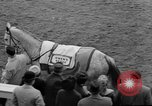 Image of Grand National horse race Liverpool England United Kingdom, 1963, second 19 stock footage video 65675042828