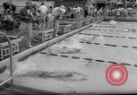 Image of swimming meet Los Angeles California USA, 1966, second 30 stock footage video 65675042881