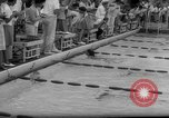 Image of swimming meet Los Angeles California USA, 1966, second 44 stock footage video 65675042881