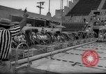 Image of swimming meet Los Angeles California USA, 1966, second 54 stock footage video 65675042881