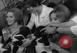 Image of Gorilla twins Germany, 1967, second 20 stock footage video 65675043036