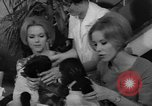 Image of Gorilla twins Germany, 1967, second 21 stock footage video 65675043036