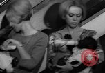 Image of Gorilla twins Germany, 1967, second 33 stock footage video 65675043036
