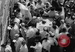 Image of Jewish New Year at Western Wall Jerusalem Israel, 1967, second 17 stock footage video 65675043048