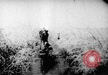 Image of Viet Cong soldiers Vietnam, 1967, second 43 stock footage video 65675043129