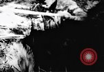 Image of Viet Cong soldiers Vietnam, 1967, second 60 stock footage video 65675043131