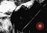 Image of Viet Cong soldiers Vietnam, 1967, second 61 stock footage video 65675043131