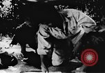 Image of Viet Cong soldiers Vietnam, 1967, second 20 stock footage video 65675043137