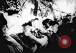 Image of Viet Cong soldiers Vietnam, 1967, second 52 stock footage video 65675043137