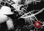 Image of Viet Cong soldiers Vietnam, 1967, second 50 stock footage video 65675043138