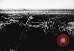 Image of Viet Cong soldiers Vietnam, 1967, second 57 stock footage video 65675043138