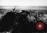 Image of Viet Cong soldiers Vietnam, 1967, second 58 stock footage video 65675043138