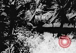 Image of Viet Cong soldiers Vietnam, 1967, second 56 stock footage video 65675043139