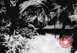 Image of Viet Cong soldiers Vietnam, 1967, second 58 stock footage video 65675043139