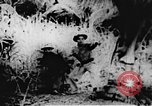 Image of Viet Cong soldiers Vietnam, 1967, second 3 stock footage video 65675043140