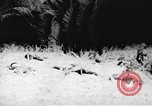 Image of Viet Cong soldiers Vietnam, 1967, second 19 stock footage video 65675043140