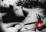 Image of Viet Cong soldiers Vietnam, 1967, second 37 stock footage video 65675043142