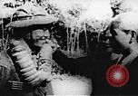 Image of Viet Cong soldiers Vietnam, 1967, second 44 stock footage video 65675043145