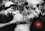 Image of Viet Cong soldiers Vietnam, 1967, second 58 stock footage video 65675043145