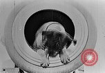 Image of King George V Orkney Islands Scotland, 1917, second 54 stock footage video 65675043156