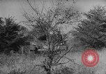 Image of 66th United States infantry tanks Fort Meade Maryland USA, 1938, second 50 stock footage video 65675043242