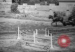 Image of The Corazzieri Italy, 1929, second 29 stock footage video 65675043284