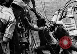 Image of Red Chinese Fishermen Taiwan Strait, 1967, second 18 stock footage video 65675043341
