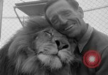 Image of Lion named King Tuffy Venice Beach Los Angeles California USA, 1935, second 16 stock footage video 65675043352