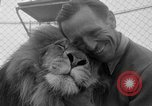 Image of Lion named King Tuffy Venice Beach Los Angeles California USA, 1935, second 18 stock footage video 65675043352