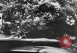 Image of German Tank Panzer Division France, 1940, second 47 stock footage video 65675043354
