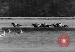Image of International horse race Laurel Maryland USA, 1958, second 26 stock footage video 65675043362