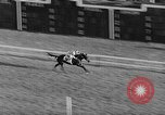 Image of International horse race Laurel Maryland USA, 1958, second 48 stock footage video 65675043362